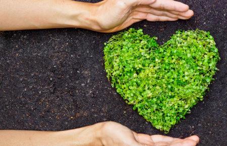 EDS saving the environment and your bank balance